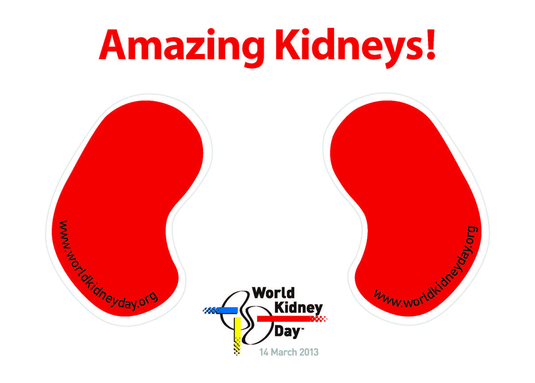 Amazing-Kidneys-Stickers